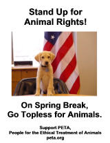 Dog and American flag topless for animals poster